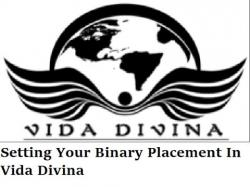 Binary Option Tutorials - GetBinary Video Course VIDA DIVINA TRAINING|Setting Your B