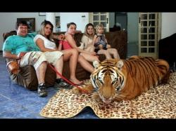 Binary Option Tutorials - AAoption Video Course Living With Tigers: Family Share Ho