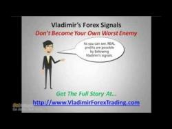 Binary Option Tutorials - trader forex What is the Best Forex MT4 Trading