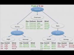 Binary Option Tutorials - Binary Book Video Course Decision Tree 1: how it works