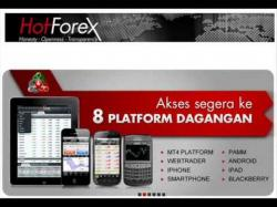 Binary Option Tutorials - AlfaTrade Video Course Forex Investment Islamic