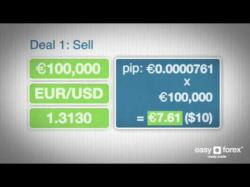 Binary Option Tutorials - forex education 03   What is a pip    easy forex