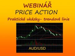 Binary Option Tutorials - WinnerOptions Video Course AUDUSD - webinář cztrader - swingov