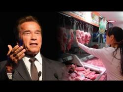Binary Option Tutorials - VPOption Video Course Arnold Schwarzenegger Wants China T