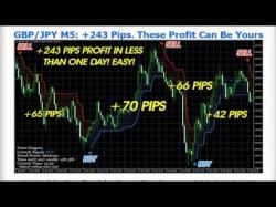 Binary Option Tutorials - trading around How to Trade Forex 5 Tips That Will